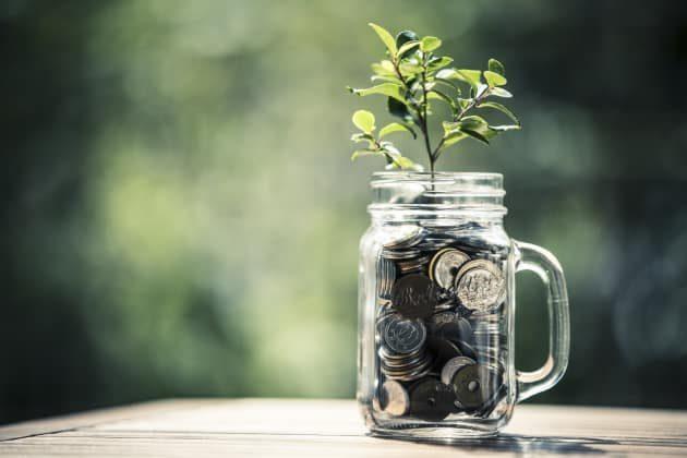 esg data sapling in mason jar full of coins