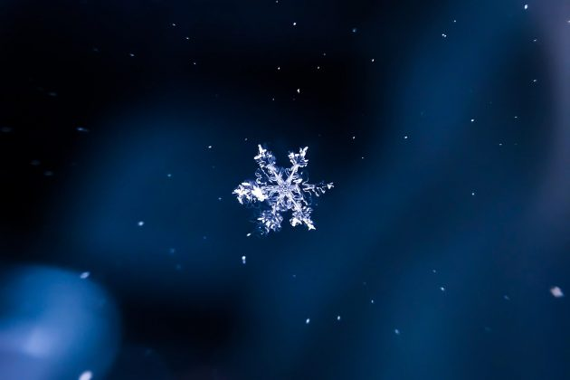 Cloud DataOps with Zaloni + Snowflake – Extensibility Wins