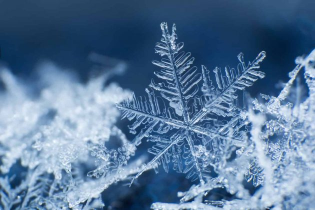Effortless cloud migration with Zaloni and Snowflake